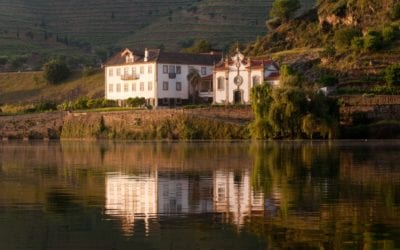 Try a wine holiday in Northern Portugal !