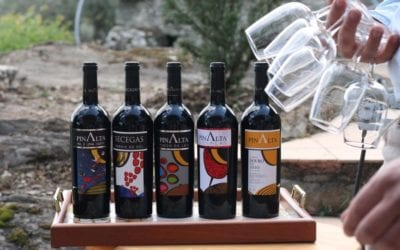 Pinalta wines – A family concern